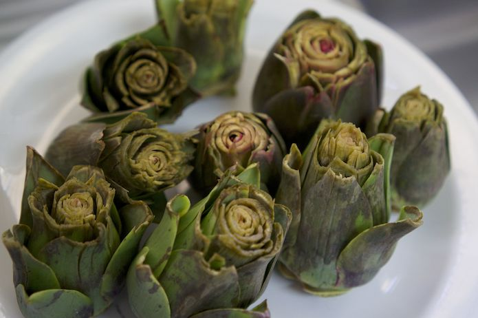 Artichokes freshly picked and soaked in acidified water