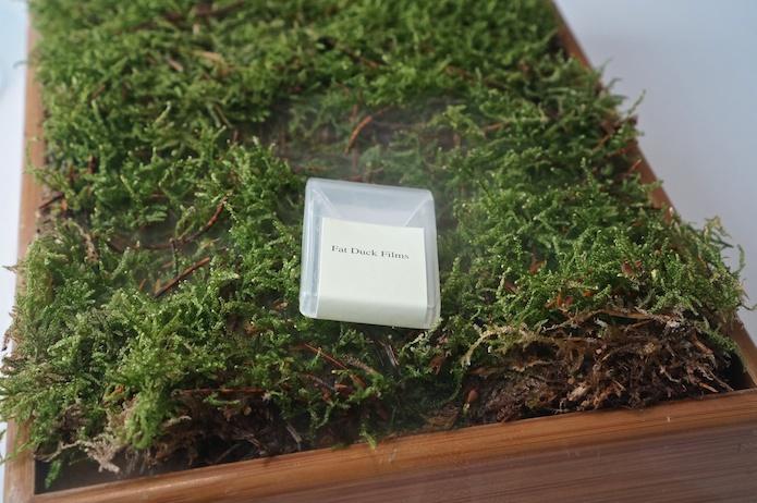 Oak and moss film