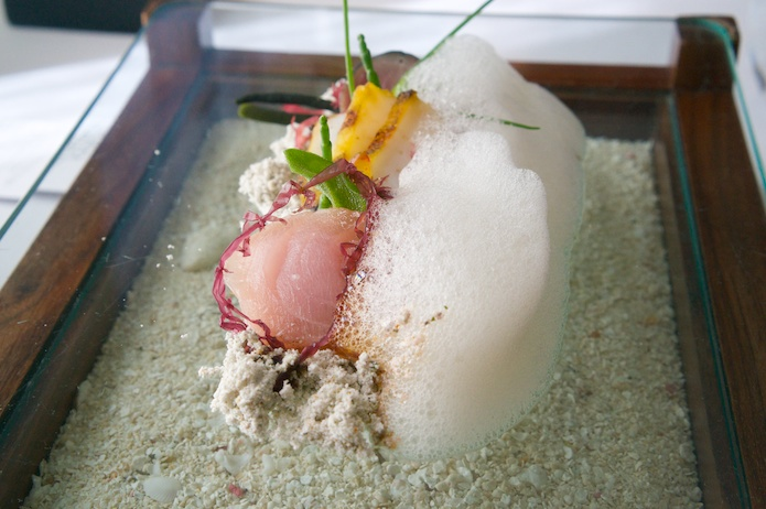 The ocean on a plate - tapioca sand, seawater foam, sashimi of kingfish, abalone and mackerel and a selection of different seaweeds.