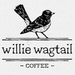 Willie Wagtail - Perth